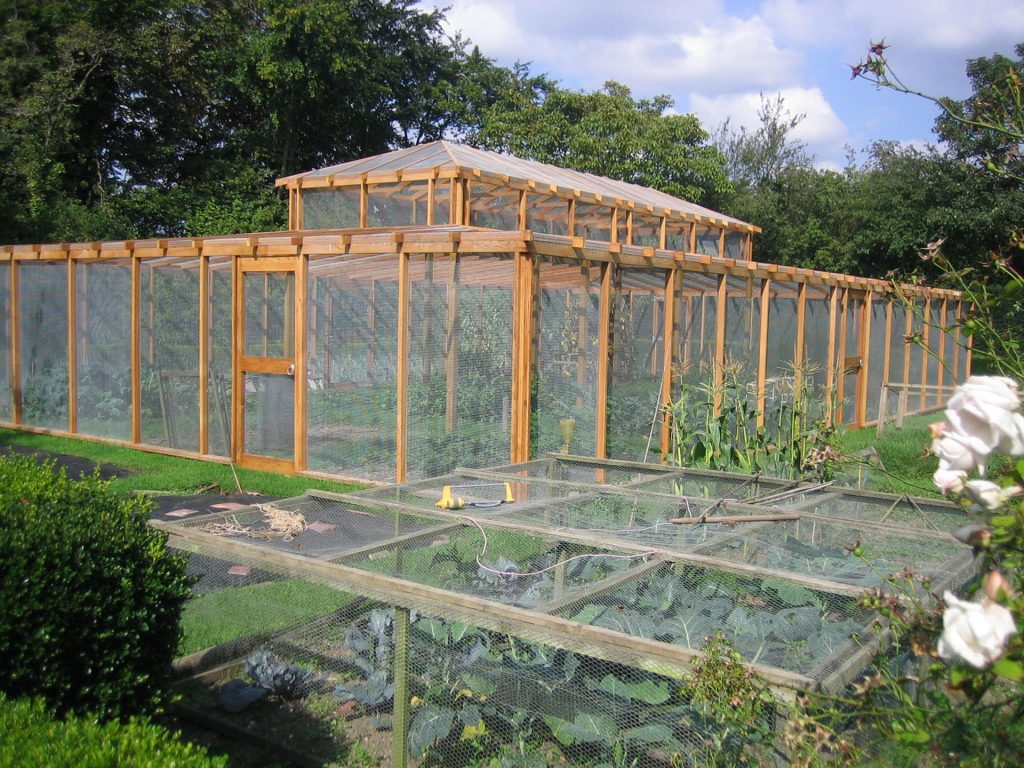 Timber Framed Fruit Cage Construction Suffolk