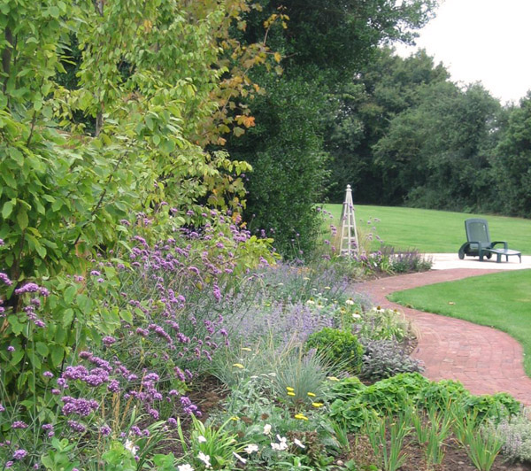planting and soft landscaping with path