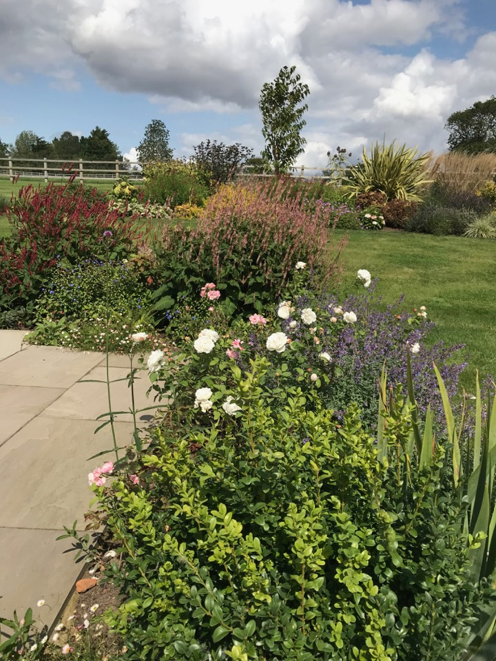 planting and soft landscaping border